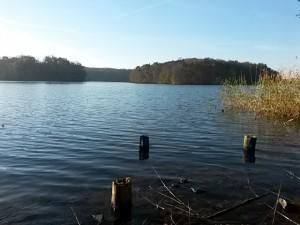 An einer Bank am Wolletz See